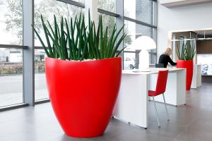 Planten werkplek groen