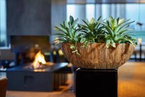 Projectinrichting plantenbak natuurlijk groen