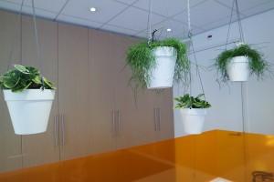 Diverse werkplekken, maatwerk tafel, Lande lamp en hangende plante