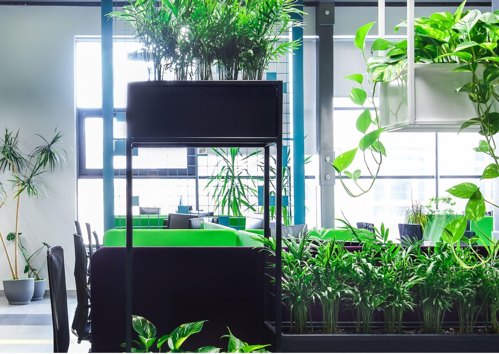 Een groen kantoor leeft!